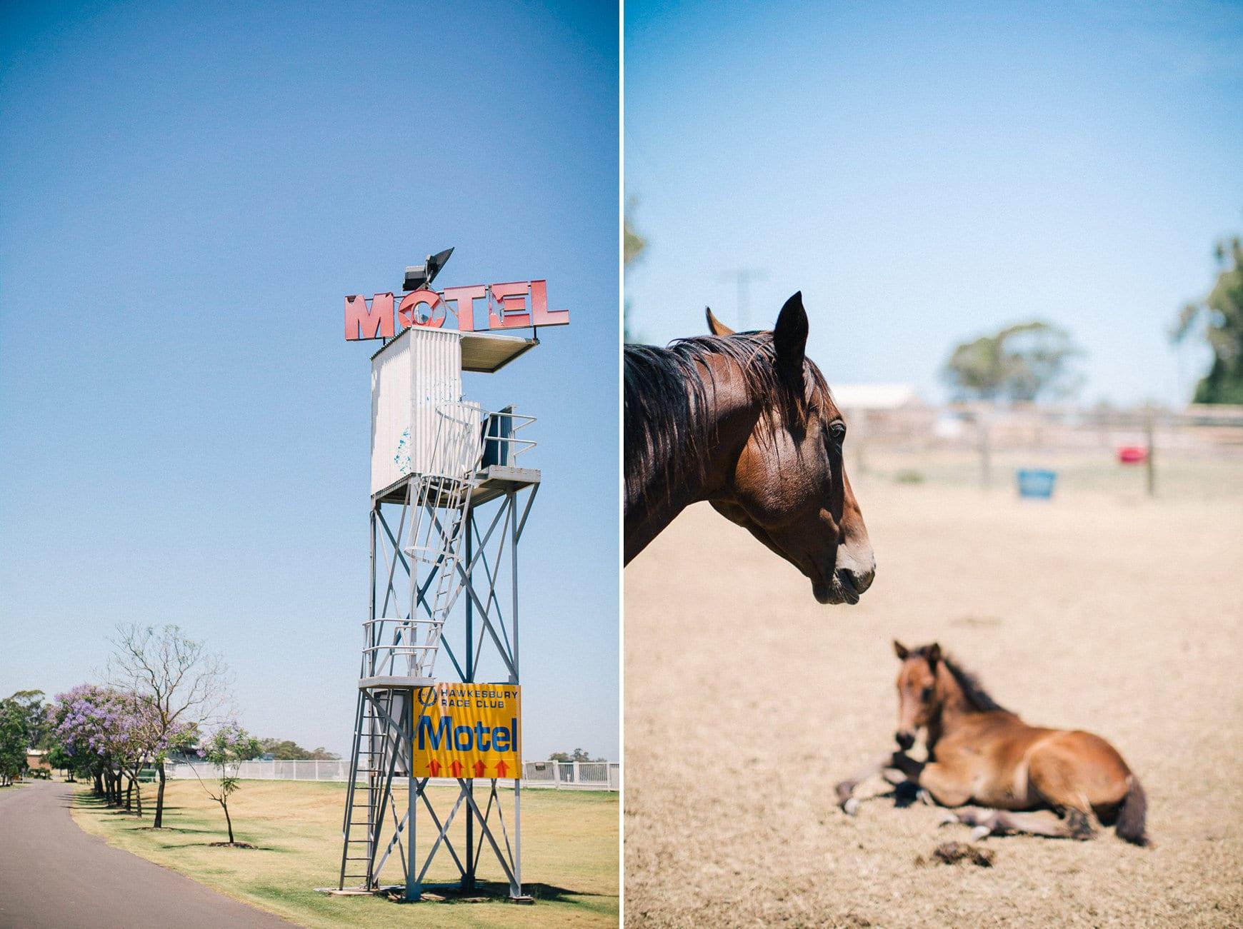wedding photographer richmond horses country